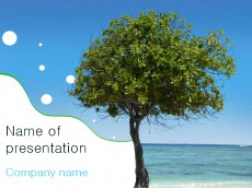 Free Tree PowerPoint template presentation