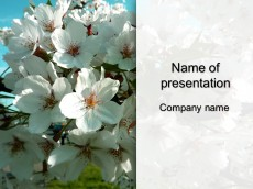 Free spring powerpoint template presentation