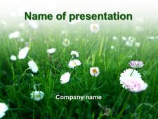 Green spring powerpoint template presentation