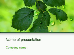 Free Tree Branch powerpoint template presentation