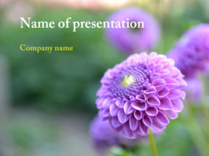 Free purple flower powerpoint template presentation